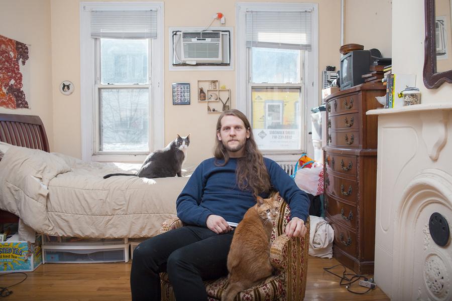 mačke i muškarac - slika 4