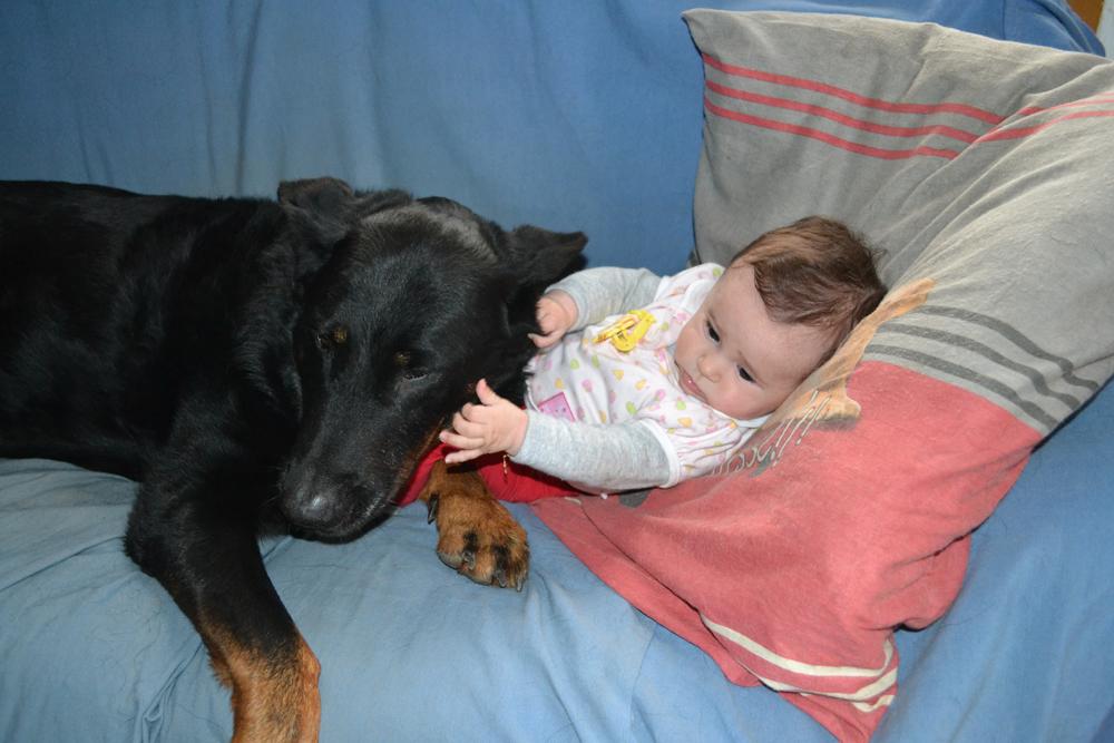 boseron i beba